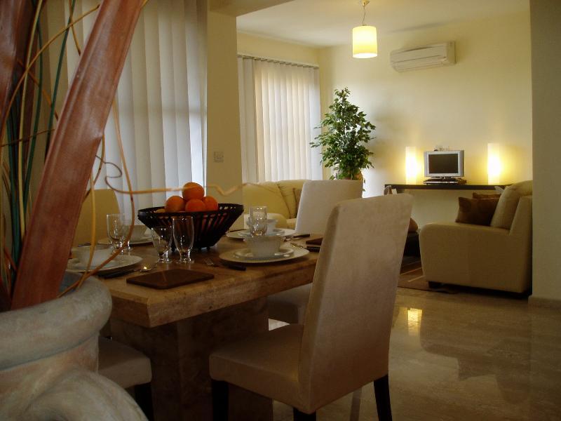 Open plan elegance - Dionysos Villa - Paphos - rentals