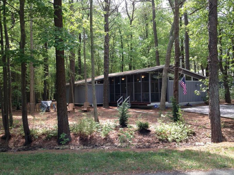 Nestled in the woods, 3 bedroom cottage. Close to the beach! - Image 1 - Bethany Beach - rentals
