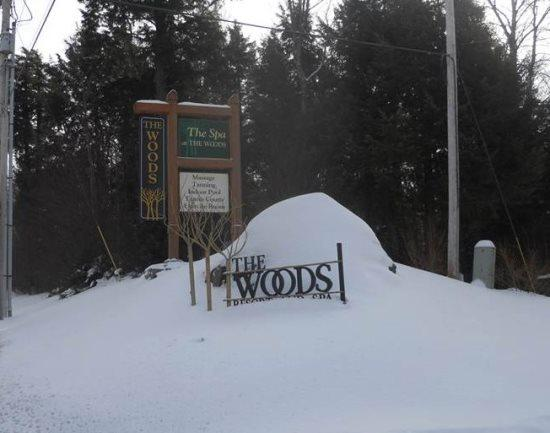 Woods Resort V17 - Exterior - Woods Resort & Spa Village 17- Two bedroom plus Loft Two bathrooms Health Club Privileges - Killington - rentals