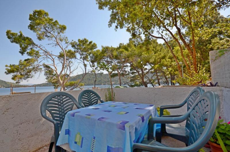 Apartments Luka - 53731-A2 - Image 1 - Ubli - rentals