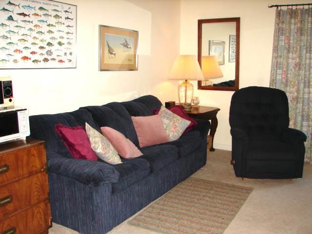 428 Oristo Lodge Villa - Wyndham Ocean Ridge - Image 1 - Edisto Beach - rentals