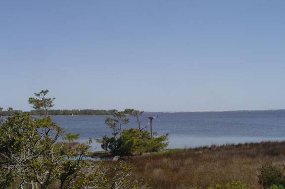 Shallowbag Bay Club #401 - Image 1 - Manteo - rentals