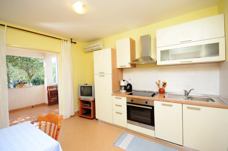 Apartments Darinka - 66791-A3 - Image 1 - Banjol - rentals