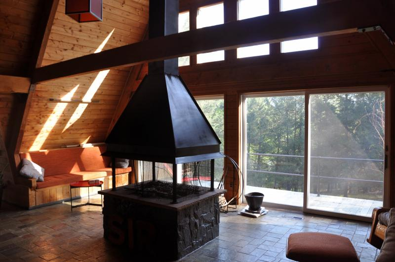 Thaddeus House 3BR - Secluded Catskills Retreat - Image 1 - Glenford - rentals