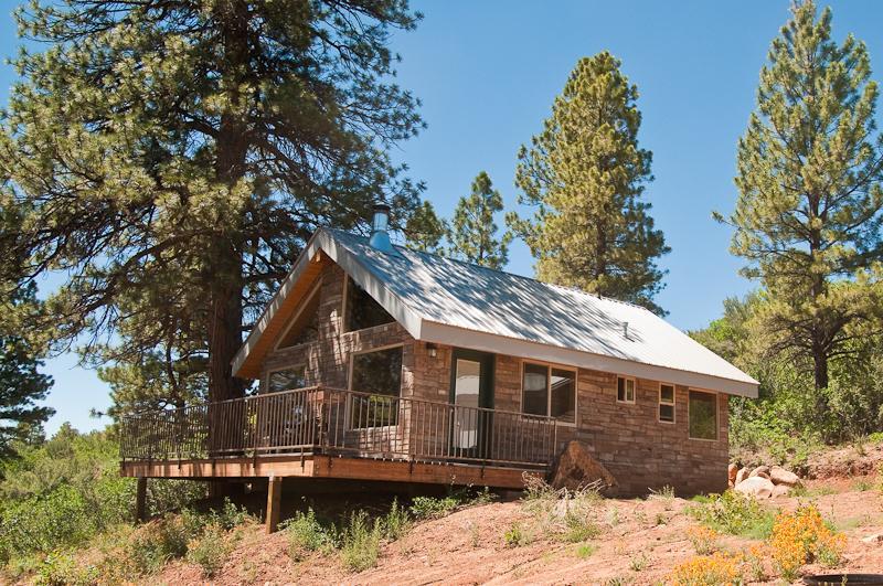 Mountain Escape Cabin #3 - Mountain Escape Cabin #3 - La Sal - rentals