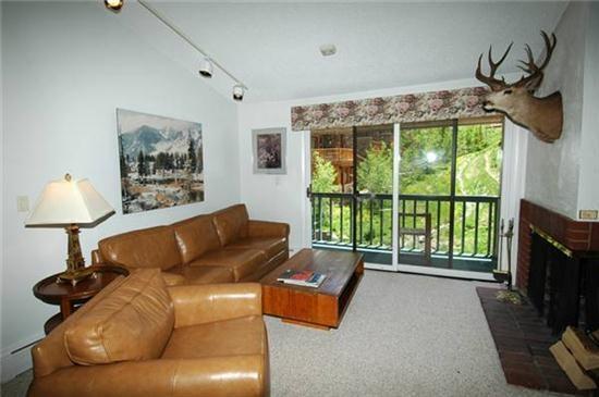Convenient Aspen Colorado vacation rental - Monarch 302 - Aspen - rentals
