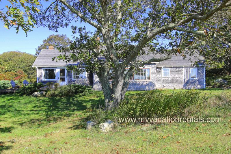 Cottage with lovely views of South Shore - WHITP - 2 week minimum stay, Pristine Hilltop Ocean View, 1.2 Miles to Lucy - Chilmark - rentals