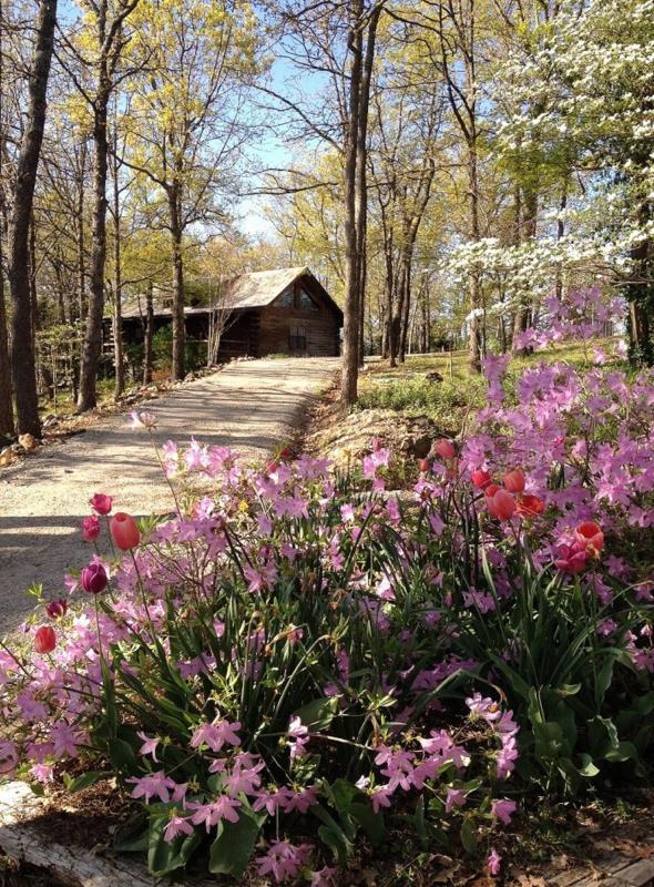 Spring view - Cherokee Mountain Log Cabin Resort - Eureka Springs - rentals