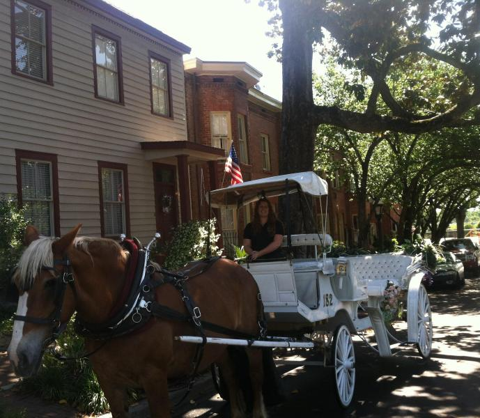Manor entrance and street view. Trolley/Carriage Tours offer my guests free pickup/drop off - Gorgeous Historic Manor-heart of downtown-walk it! - Savannah - rentals