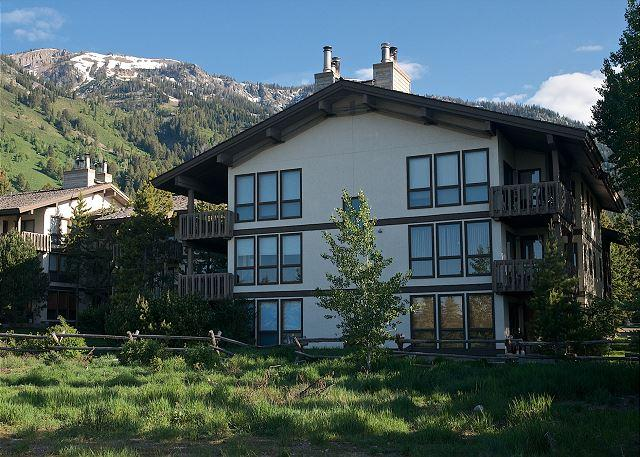 Sunny, spacious relaxation at the foot of ski hill - Image 1 - Teton Village - rentals