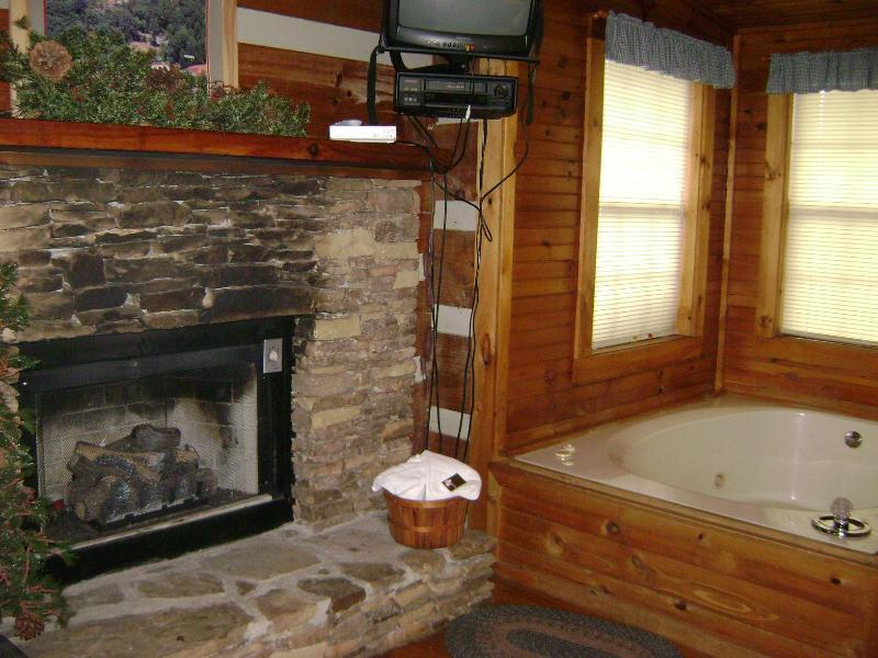 Living Room with Jacuzzi and fireplace - Cedar Cove - Townsend - rentals