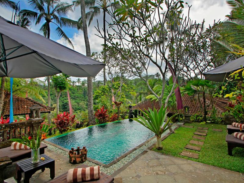 Swimming Pool - 2 Bedroom Valley View - The Mahogany Villa Ubud - Ubud - rentals