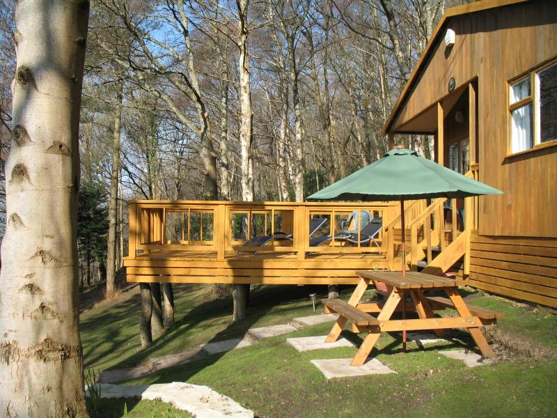 Bluebell Cottage, quiet, peaceful and cosy woodland setting - Bluebell Cottage - Betws-y-Coed - rentals