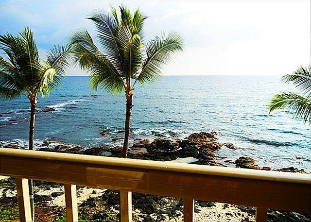 $108 special all of April & May!  Absolute Oceanfront Top Floor Private - Image 1 - Kailua-Kona - rentals