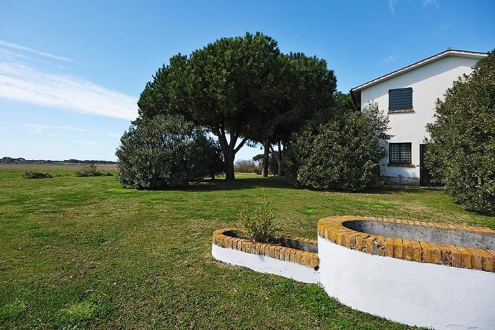 Vela - Image 1 - Capalbio - rentals