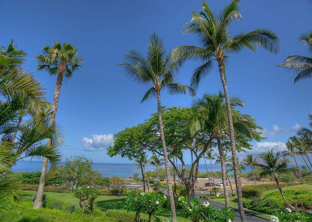 Ocean View 1-Bedroom Maui Kamaole Condo - Image 1 - Kihei - rentals