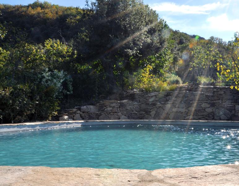 Private heated swimming pool at the top of the garden. - La Fumade - Saint-Etienne-d'Albagnan - rentals