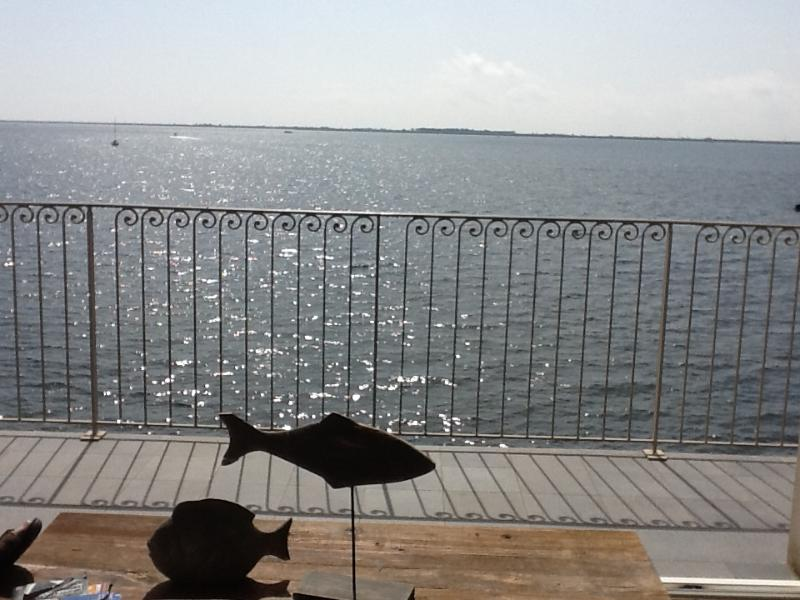 "A clear view - ""Oyat"" - Port Rive Gauche Apartment - Marseillan - rentals"