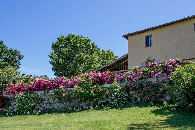 Property exterior - Tuscany villa - BFY13580 - Siena - rentals