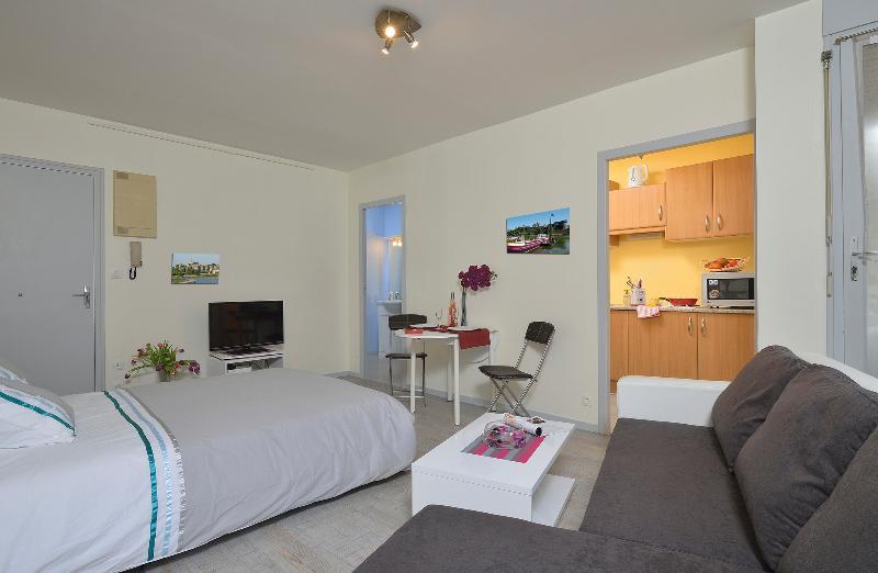 Séjour/Chambre - Appart'hotel en Centre Ville - Angers - rentals