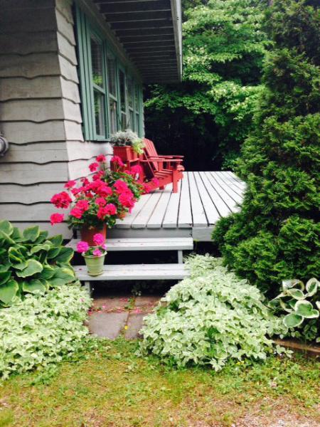 Cozy Cottage (#353) - Image 1 - Lion's Head - rentals