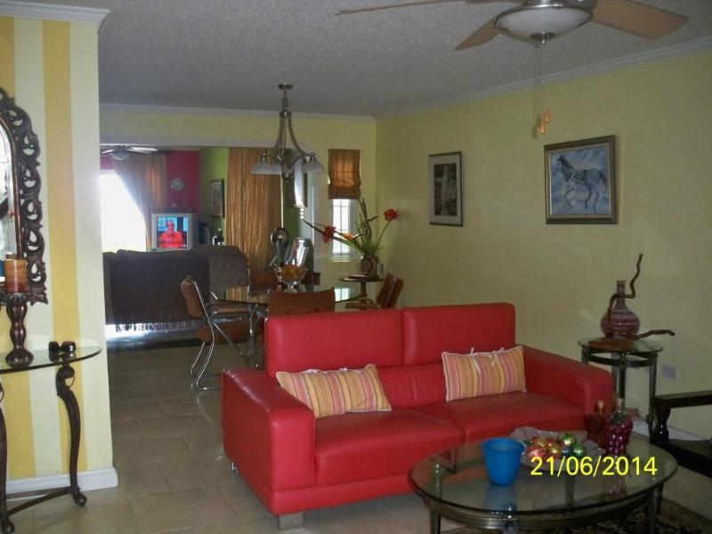 Elegant and Modern Living room - LUXURIOUS ELEGANCE;  BREATHTAKING VIEW; KINGSTON - Kingston - rentals