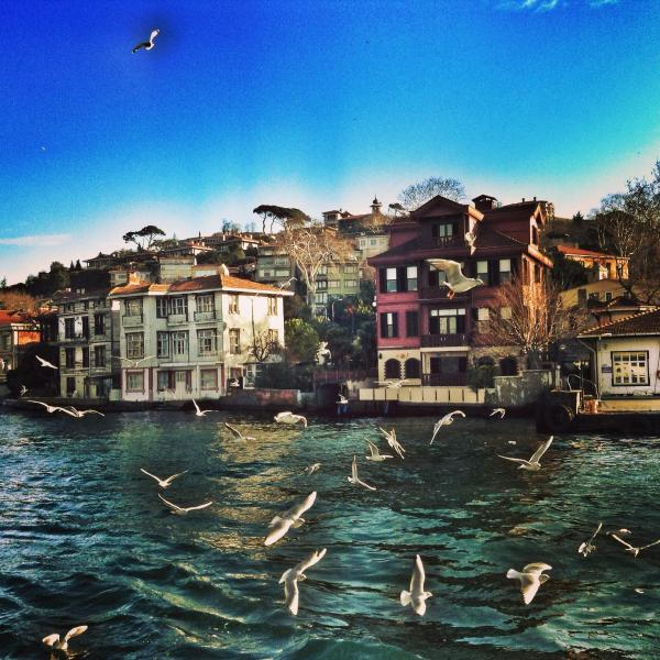 This what you see when you take the ferry from the pier (The pier is seen on the right) - Romantic&Cute flat on Bosphorus - Istanbul - rentals