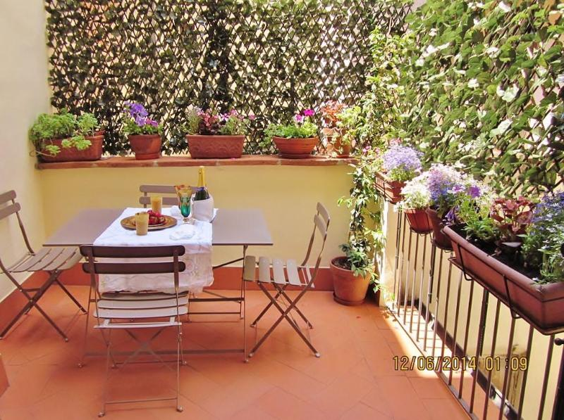 terrace - Romantic terrace in front of Accademia Gallery! - Florence - rentals