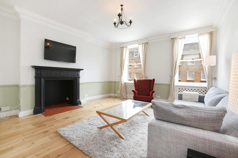 Living Area - 49. 1BR - Marble Arch - Oxford Street - Hyde Park - London - rentals