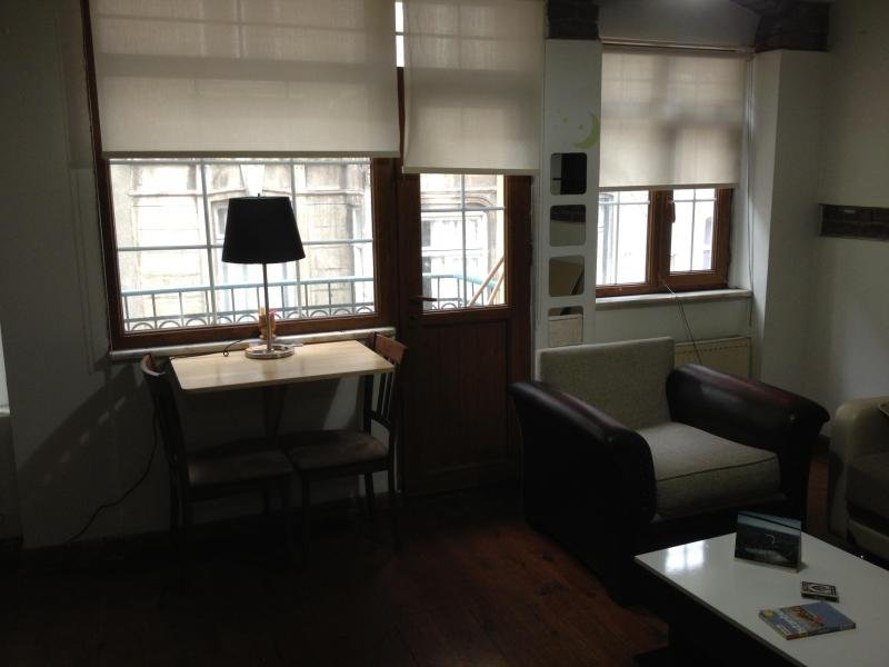 Living Roon - (4) Brick Historical Apt.-Great Location - Istanbul - rentals
