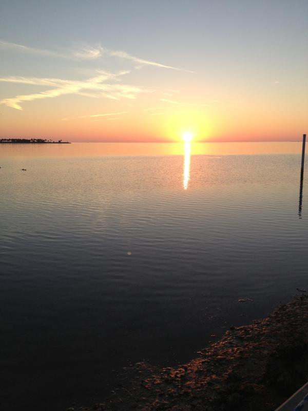 Sunsets from your backyard - Gulf of Mexico Home (6 week minimum ) - Tarpon Springs - rentals
