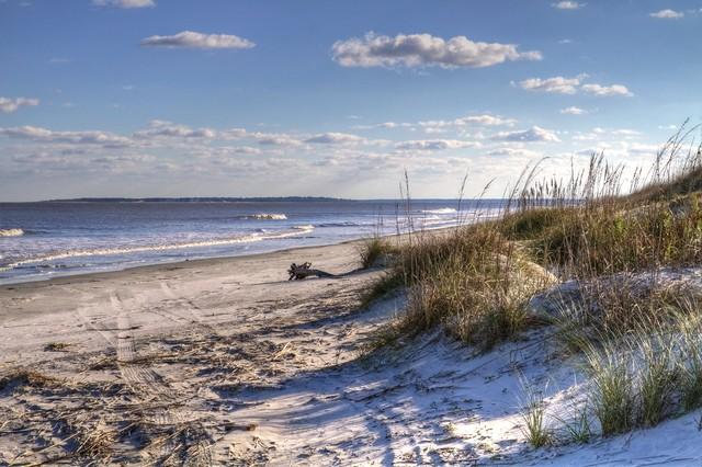 THE BEACH- 2 MILES - A GREAT LOCATION!  MUST SEE NEW UPDATED CONDO 2016 - Saint Simons Island - rentals