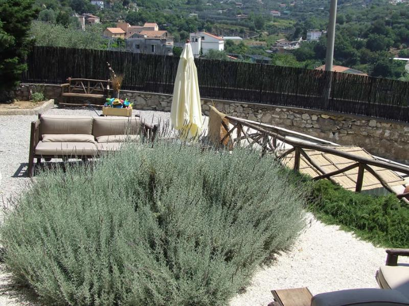 Villa Cangiani - Lavanda - Image 1 - Massa Lubrense - rentals