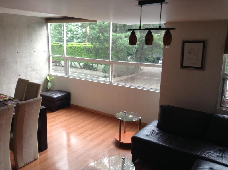 Mexico DF- South. (Coyoacán) Exclusive apartment for rent. (24hr Security) - Image 1 - Central Mexico and Gulf Coast - rentals