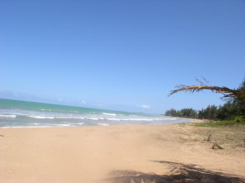 "BEGINNING YOUR MORNING WALK - BEACHFRONT PROP and VIEW OF ""EL YUNQUE"" RAINFOREST - Rio Grande - rentals"