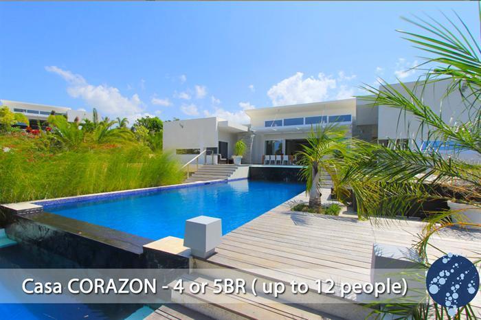Villa CORAZON - Big Heart and Big House! - Image 1 - Cabarete - rentals