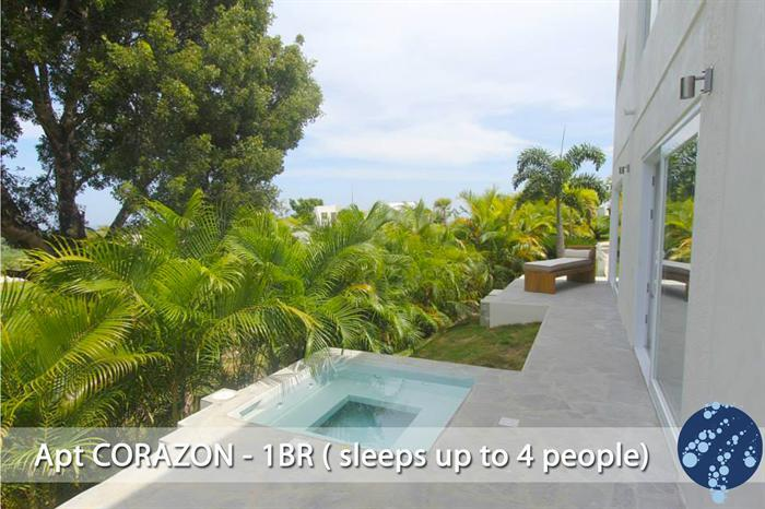 Apartment CORAZON - Lovely and Private Place! - Image 1 - Cabarete - rentals