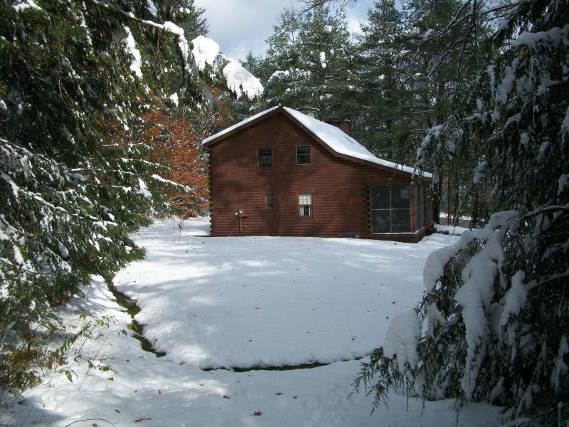 Cozy Log Cabin on 6 acres - Cozy thee bedroom, two bath log cabin on 6 acres - Jamaica - rentals