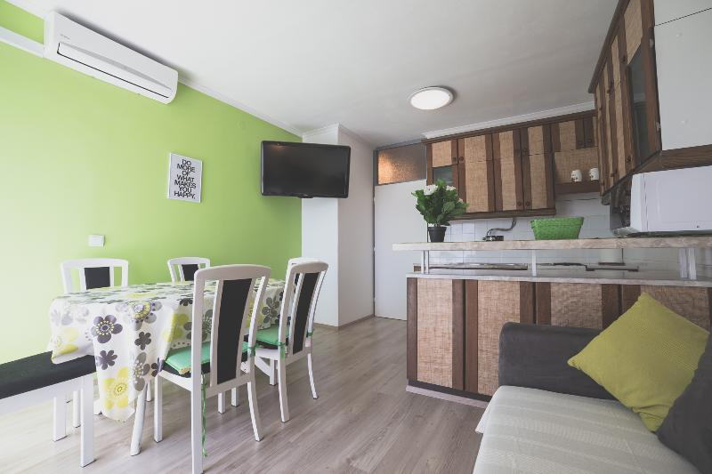 A relaxing apartment near the center - Image 1 - Split - rentals