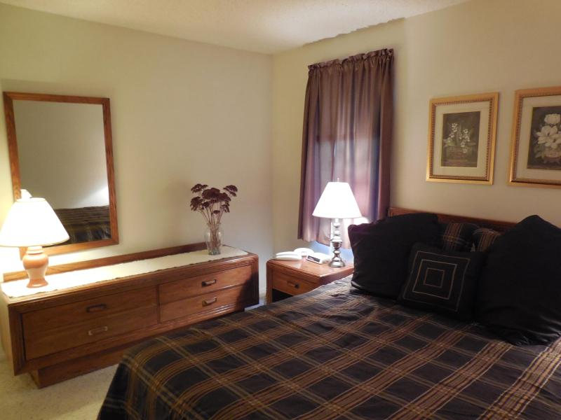 Riverview 1 BR Condo; Aspen 5 at Dells Club Condos - Image 1 - Wisconsin Dells - rentals