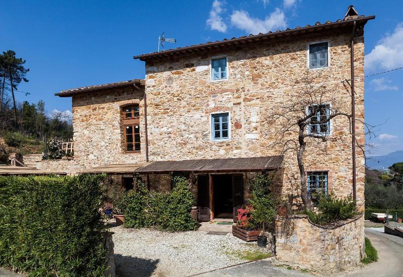 Villa Checco - Villa Checco among the olive trees Lucca, Tuscany - Lucca - rentals