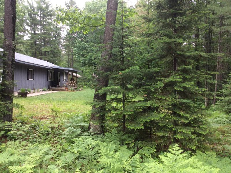 Jada House-All seasons- Winter & Spring Available~ - Image 1 - Eagle River - rentals