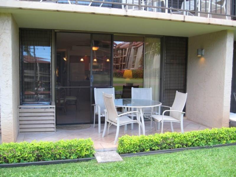 Papakea #E109 - Image 1 - Lahaina - rentals