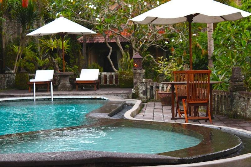 Ubud Villa Resort by the ravine - Image 1 - Ubud - rentals