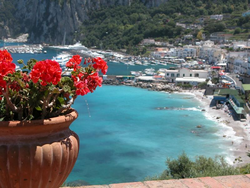 From the private terrace - Enchanting House with Terrace with ocean view-wifi - Capri - rentals