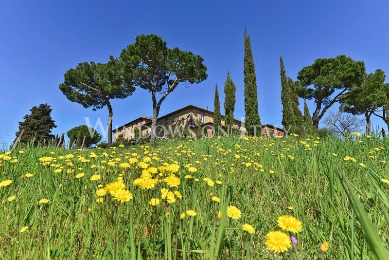 Villa Le Cantine Di Cerreto - Windows On Italy - Image 1 - Castelnuovo Berardenga - rentals