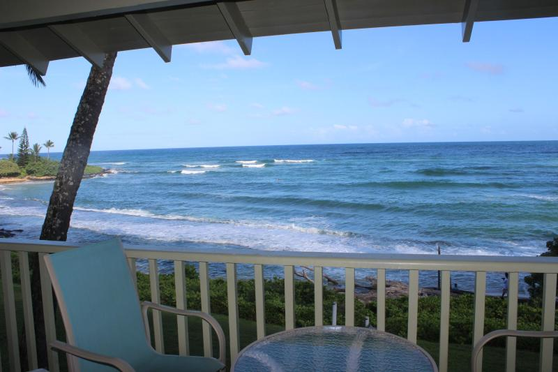 You will love this place - Ocean Gem Availability @ PacificCondosKauai - Kapaa - rentals
