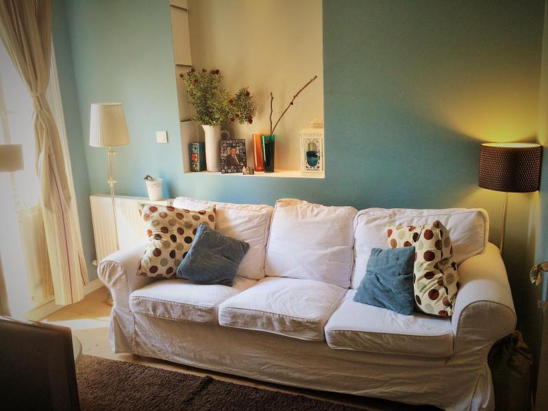 lliving room - lovely cozy greek beyoğlu apt - Istanbul - rentals