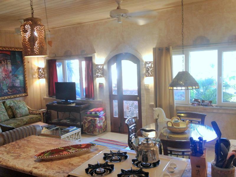 Amore Loft Apartment - Image 1 - Cruz Bay - rentals
