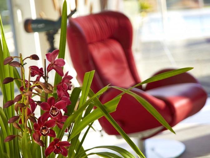Kina Beach luxury Retreat - Image 1 - Nelson - rentals